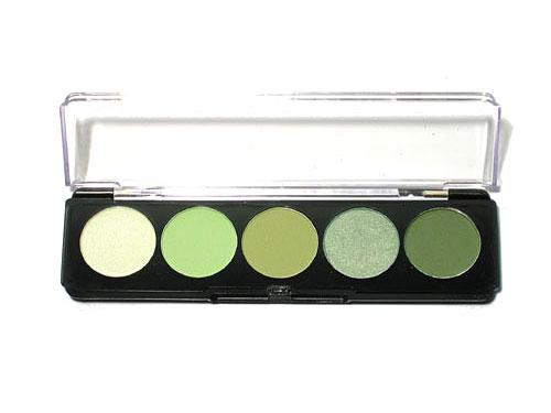 Envy 5 Shade Paint Palette
